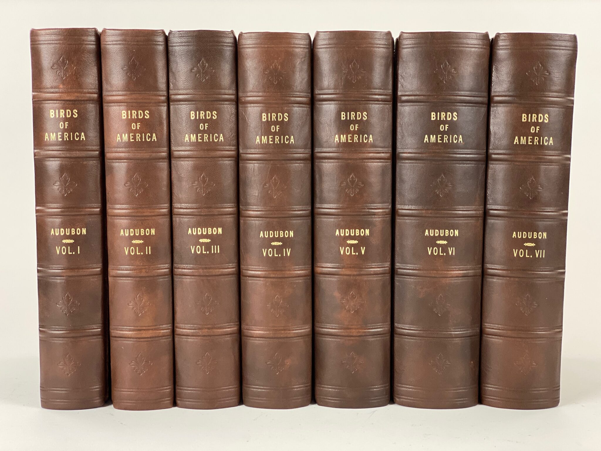 """BIRDS OF AMERICA"", COMPLETE 7 VOL. AFTER AUDUBON 